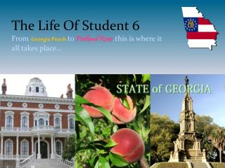 The Life Of  Student 6