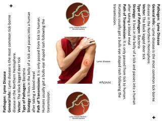 Pathogen:  Lyme Disease