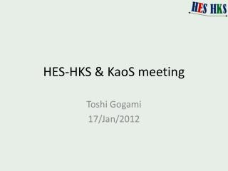 HES-HKS &  KaoS  meeting