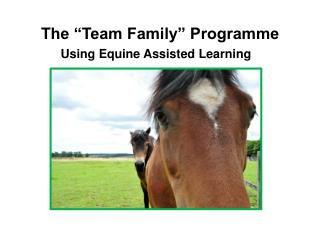 "The ""Team Family"" Programme"