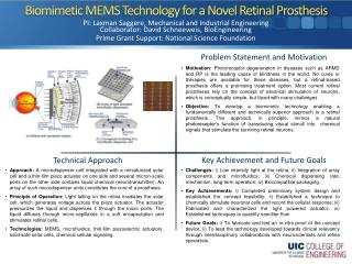 Biomimetic  MEMS Technology for a Novel Retinal Prosthesis