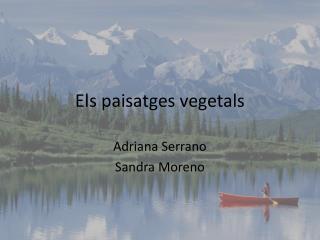Els paisatges vegetals