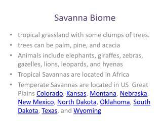 Savanna Biome