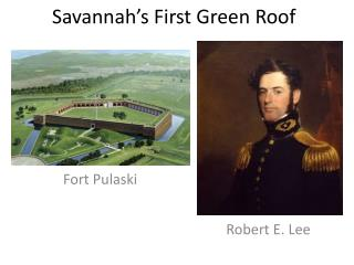 Savannah�s First Green Roof