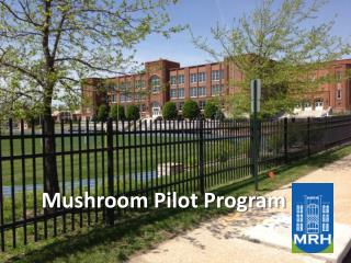 Mushroom Pilot Program