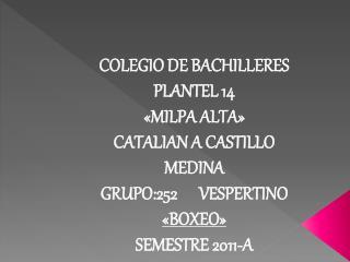COLEGIO DE BACHILLERES PLANTEL 14  «MILPA ALTA» CATALIAN A CASTILLO MEDINA
