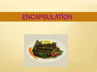 ENCAPSULATİON