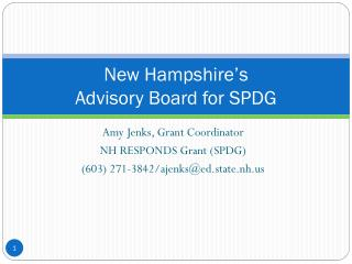 New Hampshire's  Advisory Board for SPDG
