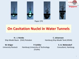 On Cavitation Nuclei in Water Tunnels
