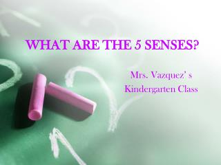 WHAT ARE THE 5 SENSES