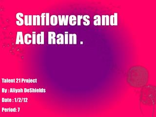 Sunflowers and      Acid Rain .