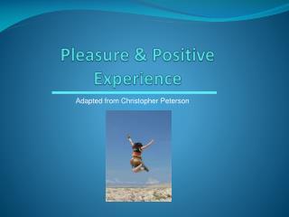 Pleasure & Positive Experience