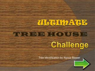 Ulti m ate Tree House