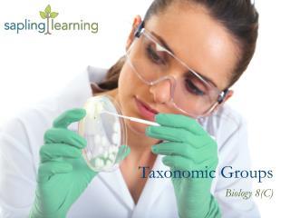 Taxonomic Groups