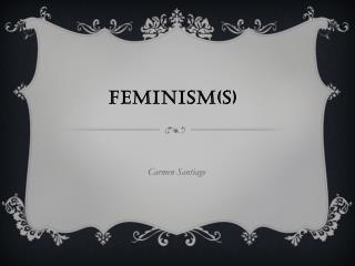 Feminism(s)