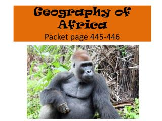 Geography of Africa   Packet page 445-446