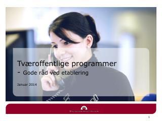 Tværoffentlige programmer  -  Gode råd ved etablering Januar 2014