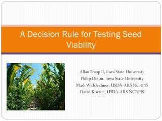A Decision Rule for Testing Seed Viability