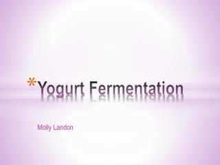 Yogurt Fermentation