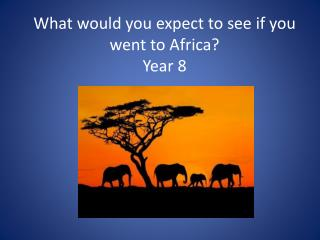 What would you expect to see if you went to Africa? Year 8