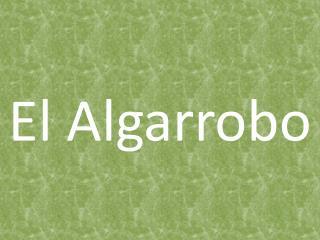 El Algarrobo