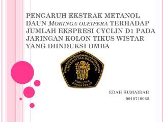 EDAH HUMAIDAH 0910710062