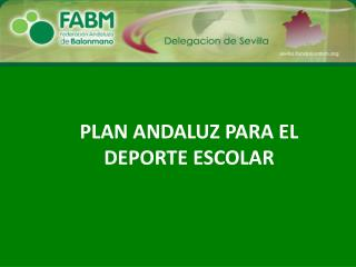 PLAN ANDALUZ PARA EL DEPORTE ESCOLAR
