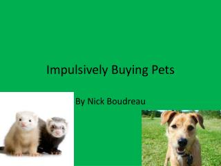 Impulsively  Buying Pets