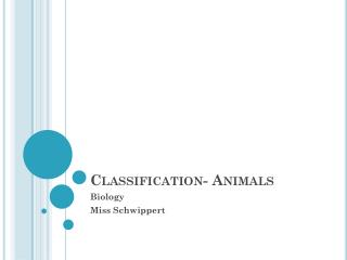 Classification- Animals