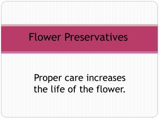 Flower  Preservatives