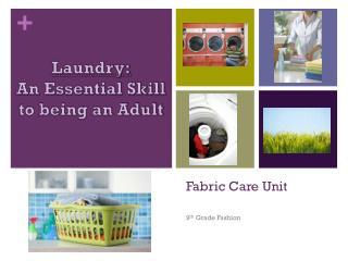 Fabric  Care Unit