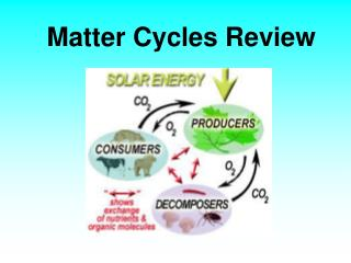 Matter  Cycles Review