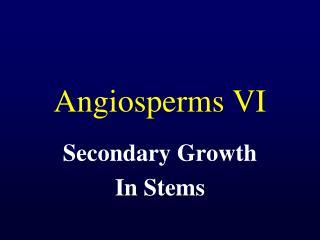 Angiosperms VI