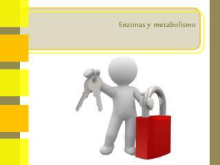 Enzimas y  metabolismo