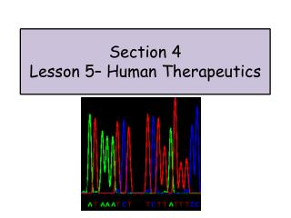 Section 4 Lesson  5 – Human Therapeutics
