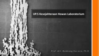 UP.5 Kesejahteraan Hewan Laboratorium