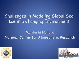 Challenges in Modeling Global Sea Ice in a Changing Environment