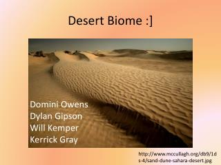 Desert Biome :]