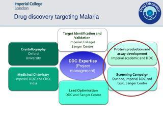 Drug discovery targeting Malaria