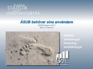 ÅSUB behöver sina användare ÅSUB-dagen 2012 Bjarne Lindström