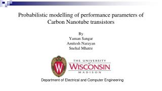 Probabilistic modelling of performance parameters of Carbon Nanotube  transistors