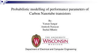 Probabilistic modelling of performance parameters of Carbon Nanotube  transistors