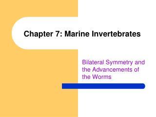 Chapter 7: Marine Invertebrates