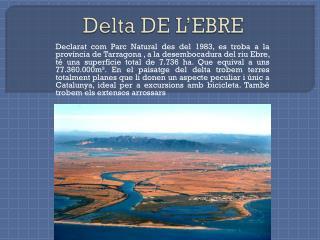 Delta DE L'EBRE
