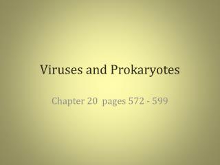 Viruses and Prokaryotes