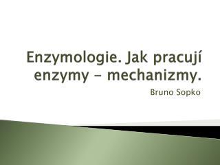 Enzymologie. Jak pracují enzymy - mechanizmy .