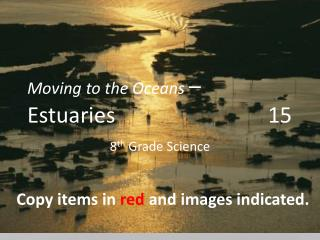 Moving to the Oceans  – Estuaries                            15