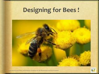 Designing for Bees !