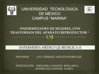 """UNIVERSIDAD   TECNOLÓGICA  DE  MÉXICO CAMPUS """"MARINA"""""""