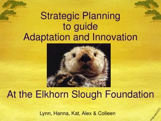 Strategic Planning to guide  Adaptation and Innovation